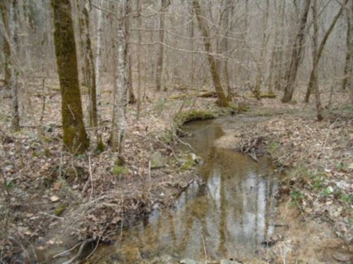 218Ac Creeks, Mtn Views : Jamestown : Fentress County : Tennessee