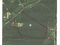 23.1 Acres With Timber & Creek : Hohenwald : Lewis County : Tennessee