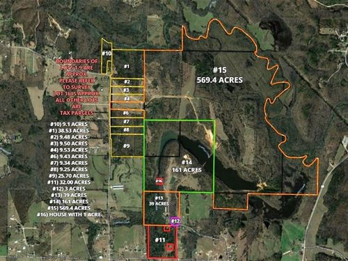Summit Chase Farms Auction : Danville : Morgan County : Alabama