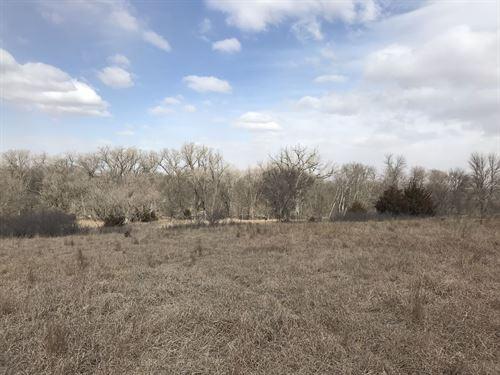 Phillips County Hunting : Logan : Phillips County : Kansas