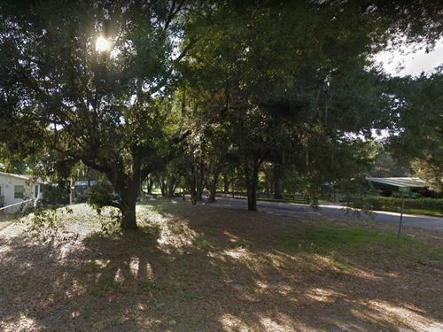 .37 Acres In Plant City, FL : Plant City : Hillsborough County : Florida