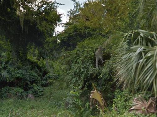 Volusia County, Fl $13,500 Neg : Osteen : Volusia County : Florida
