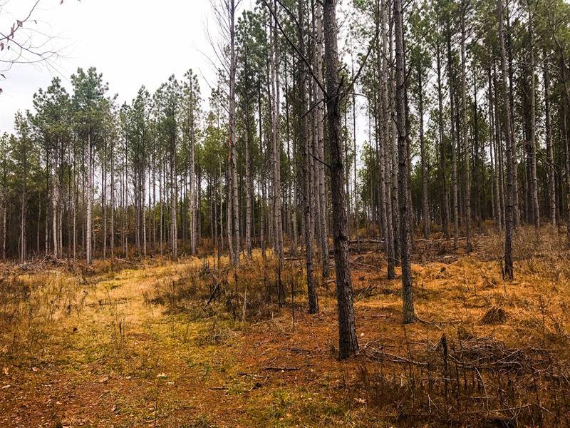 52 Acre Recreational Property : Jonesville : Union County : South Carolina