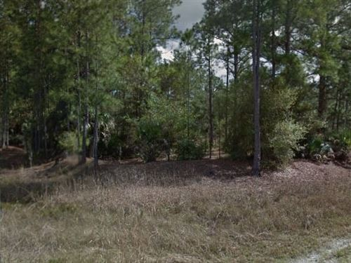 Lee County, Fl $28,000 Neg : W Lehigh Acres : Lee County : Florida