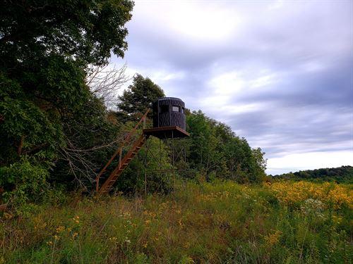 Leeth Creek Rd - 48 Acres : Waverly : Pike County : Ohio