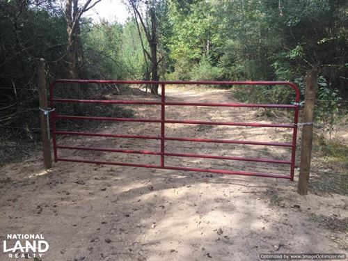 Great Hunting Tract in Lexington, : Lexington : Holmes County : Mississippi