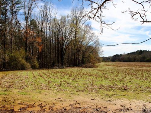 160 Acres In Montgomery County : Winona : Montgomery County : Mississippi