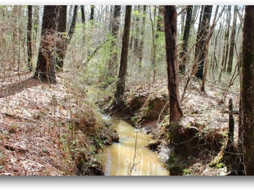 350 Acres In Carroll County : Vaiden : Carroll County : Mississippi