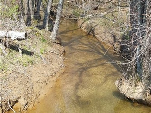 Hardwoods Creek And Mountain Views : Marble : Cherokee County : North Carolina