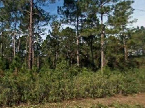 St. Johns County, Fl $110,000 Neg : Hastings : Saint Johns County : Florida