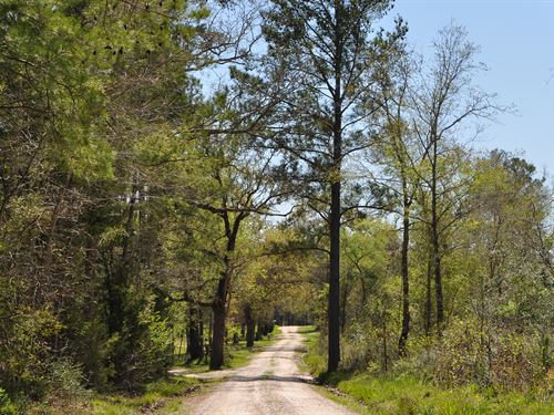 10.5 Ac Jordy Road : Huntsville : Walker County : Texas