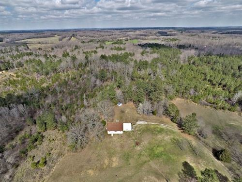 Secluded Acreage In Carroll County : Huntingdon : Carroll County : Tennessee