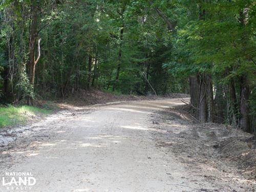 143 Ac Johnston Tract : Vicksburg : Warren County : Mississippi
