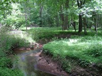 Creek, Views, Woods, Paved Access : Pikeville : Sequatchie County : Tennessee