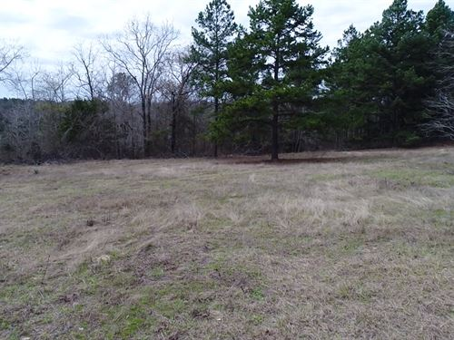 17 Acre With Hilltop Views : Palestine : Anderson County : Texas