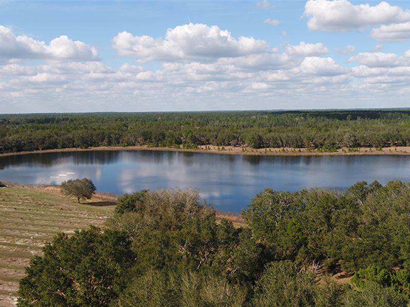 Wild Lakes Ranch In Weirsdale : Weirsdale : Marion County : Florida