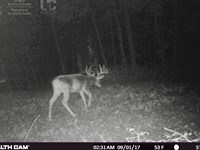 Once In A Lifetime Hunting Property : Boaz : Richland County : Wisconsin