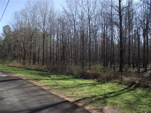 7 Acres in Black Warrior Bay : Akron : Hale County : Alabama