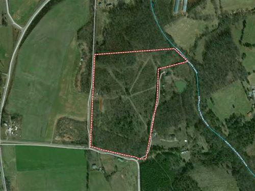 31 Acres in Hamptonville, Yadkin : Hamptonville : Yadkin County : North Carolina