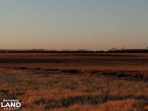 Stafford County Irrigated S 80 : Saint John : Stafford County : Kansas