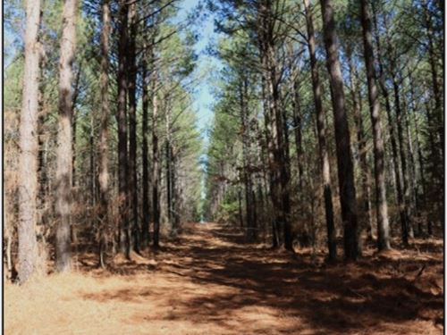 22 Acres In Hinds County : Clinton : Hinds County : Mississippi