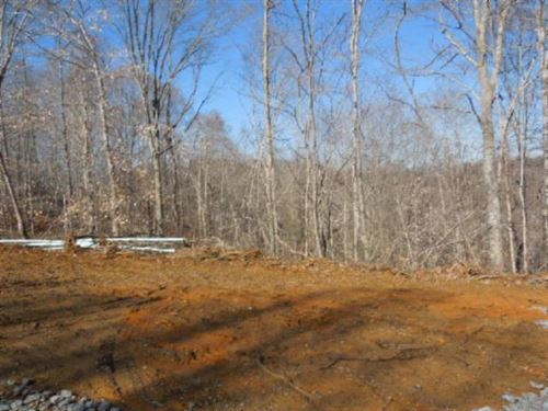 8.43 Acres Located In A Rural Area : Burkesville : Cumberland County : Kentucky