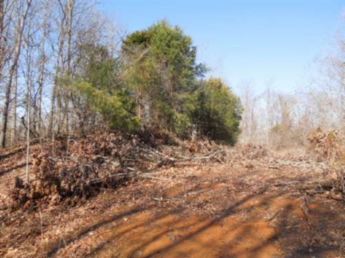 20.65 Acres Located In A Rural Area : Burkesville : Cumberland County : Kentucky
