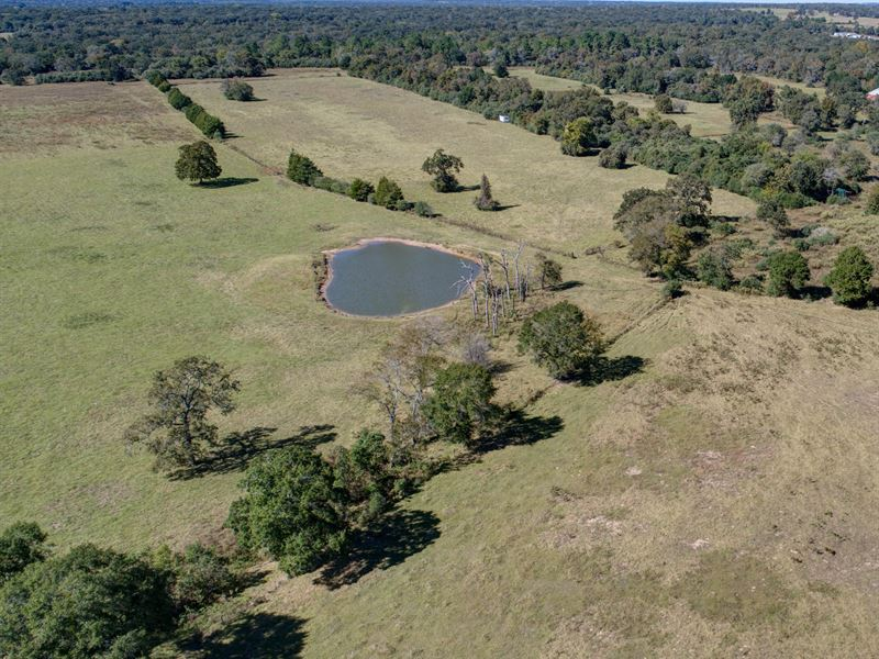 51 Acres In Leon County : Normangee : Leon County : Texas