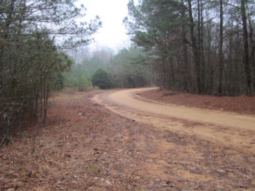 46 Acres In Chickasaw County : Houlka : Chickasaw County : Mississippi