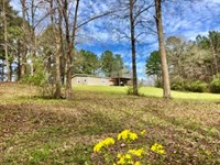 Secluded With Creek And Hardwoods : Centreville : Wilkinson County : Mississippi