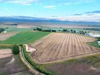 33+/- Acres & Water Rights : Longmont : Boulder County : Colorado