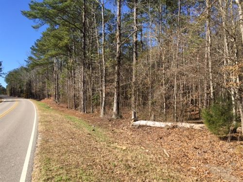 Lake Martin/Eclectic 8 Acre Lot : Eclectic : Elmore County : Alabama
