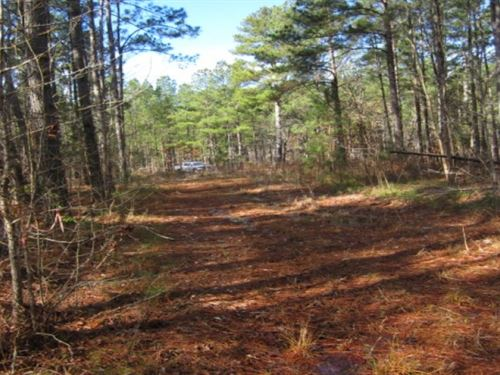 1 Acre In Monroe County : Amory : Monroe County : Mississippi