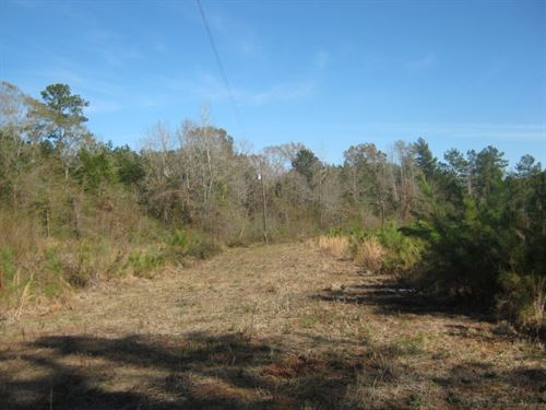 3172 West Topisaw Rd, Ruth, MS : Ruth : Pike County : Mississippi