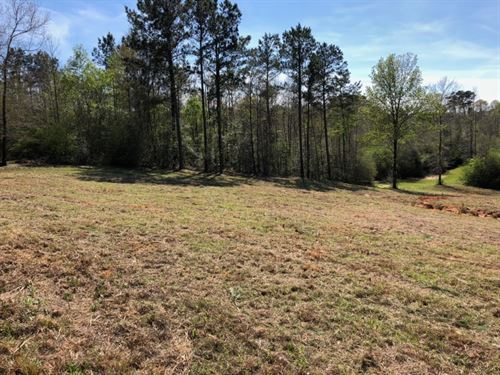 2 Acres / Tylertown, Ms : Tylertown : Walthall County : Mississippi