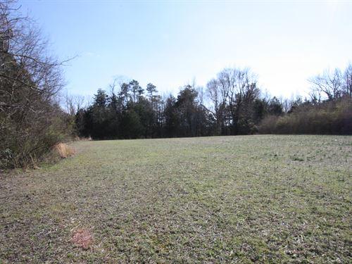 Beautiful 20.06 Acres In Hanover Va : Ashland : Hanover County : Virginia