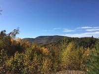 Saddleback Ridge Forest : Peru : Oxford County : Maine