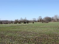 Real Estate Auction : Madison : Jefferson County : Indiana