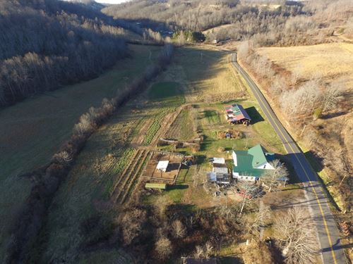 Jessie Creek Rd - 80 Acres : Bidwell : Gallia County : Ohio