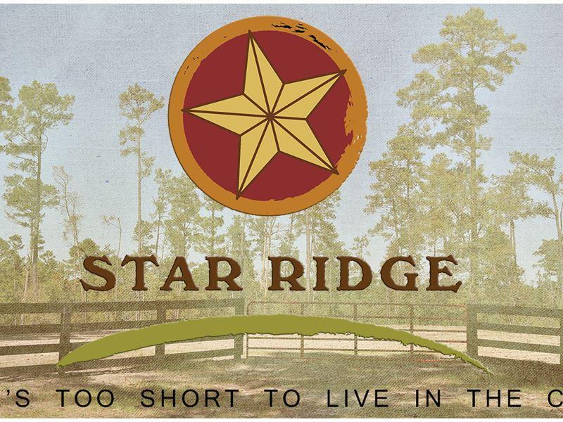 18 Ac Cm Hardy Lane-Star Ridge : Livingston : Polk County : Texas