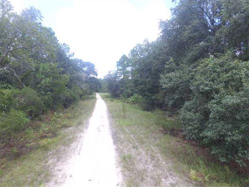 Vacant NE River Country Trail, Ru : Lee : Madison County : Florida