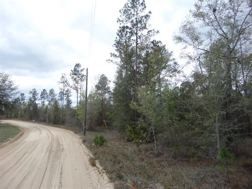 Home Or Recreational Retreat : Waynesville : Brantley County : Georgia