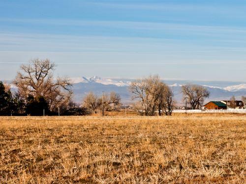 Wcr 72 & 257 14 Acres : Windosr : Weld County : Colorado