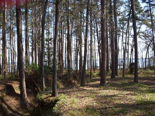 Beautiful Waterfront Lot in Riverv : Abbeville : Henry County : Alabama