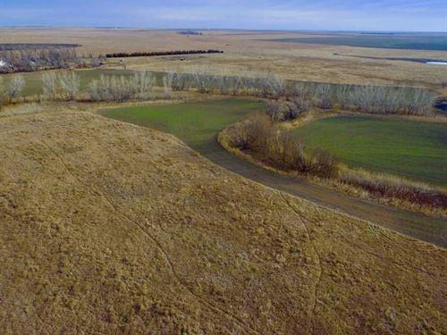 160 Acres of Hunting, Tillable : Burdett : Pawnee County : Kansas