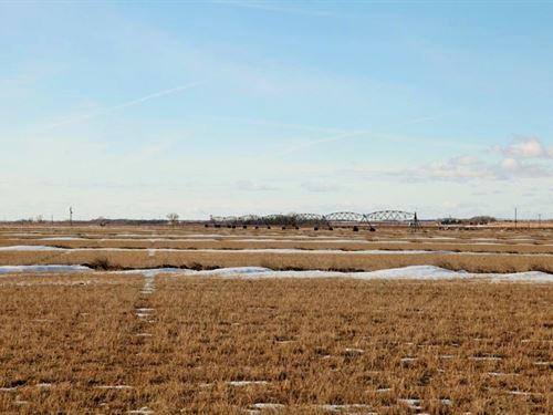 Logan County Pivot Irrigated/Pastur : Crook : Logan County : Colorado