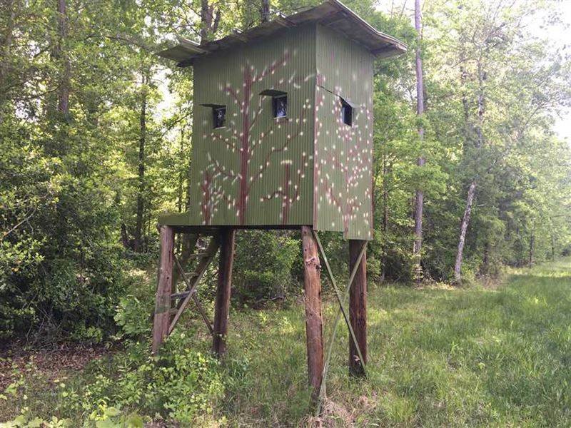 70 Acres in Cleveland County Wit : Kingsland : Cleveland County : Arkansas