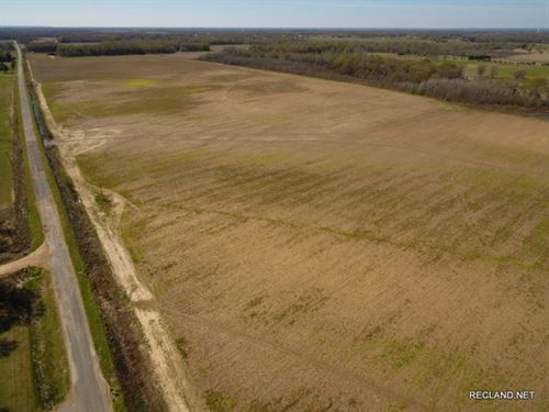 80 Ac - Irrigated Farm Land With Le : Fort Necessity : Franklin Parish : Louisiana