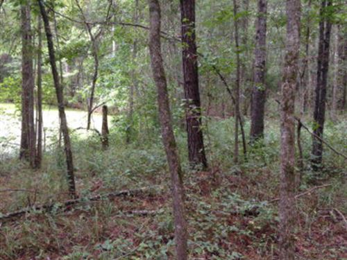 31+/- Ac Rural Land : Taylorsville : Smith County : Mississippi