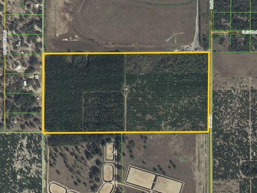 84.6 Acres Near Hamlin West : Winter Garden : Orange County : Florida